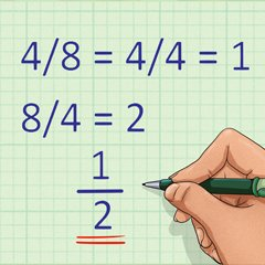 Fraction Calculator - Calculatorall.com
